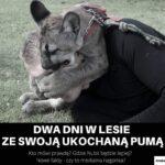 Puma Numbia